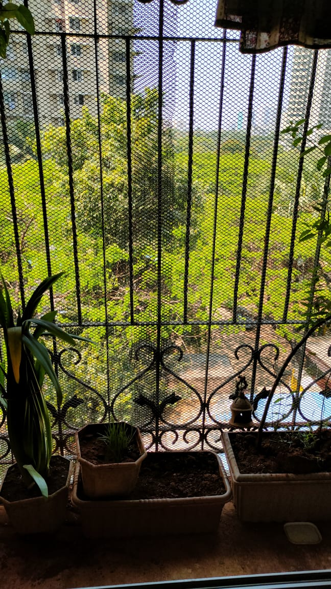 1 BHK Apartment for rent in Goregaon West